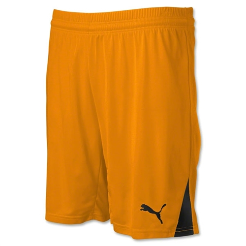 Puma Team Shorts - Orange 701275Ora