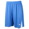 Puma Team Shorts - Blue 701275Blu