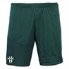 Lee County Strikers adidas Regista 16 Short - Collegiate Green/White AP0549