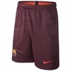 Nike Barcelona Youth Third Short 2017-2018 847388-681