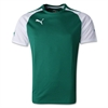 Puma Speed Jersey - Green 701906Grn