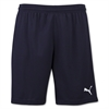 Puma Pitch Shorts - Navy 702072Nav