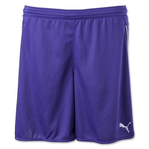 Puma Women's Speed Shorts - Purple 702062Pur