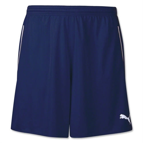 Puma Speed Shorts - Navy 702060Nav