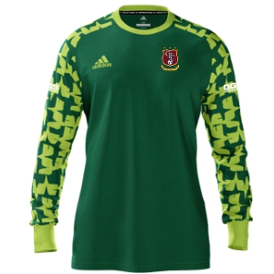Golden Goal Sports adidas Youth Mi Assista 17 Goalkeeper Jersey - Green/Lime GGS-MIAD2US37945208