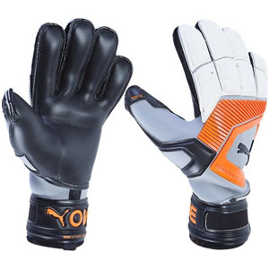 Puma One Protect 18.1 Finger Protection Glove - Black/Silver 041477-01