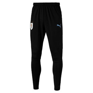 Puma Uruguay Training Pants 2018 752594-02