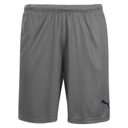 Puma Liga Shorts - Steel Grey/Black 703431-13