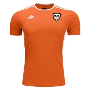 Golden Goal Sports adidas Entrada 18 Jersey - Orange/White GGS-CD8366