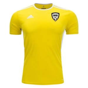 Golden Goal Sports adidas Entrada 18 Goalkeeper Jersey - Yellow/White WSU-CD8390