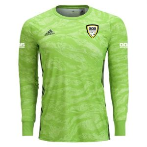 Golden Gold Sports adidas adiPro 19 Goalkeeper Jersey - Semi Solar Green GGS-DP3137