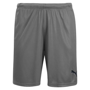 Puma Liga Shorts - Steel Grey/Black 703433-13